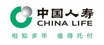 中国人寿保险集团公司